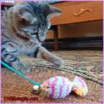 Crochet Tutorial: Catnip Sardine Toy